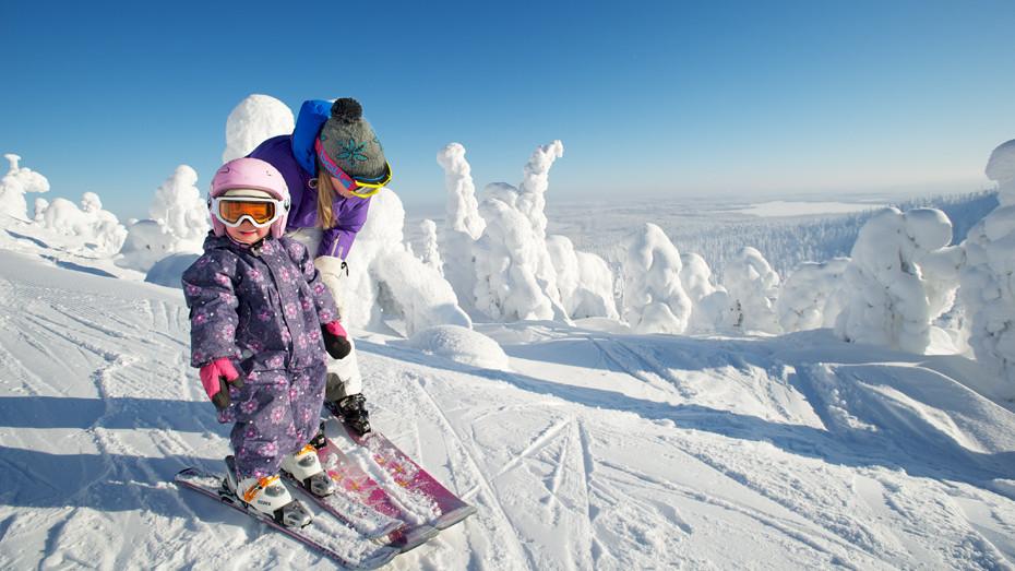 лыжники на трассе