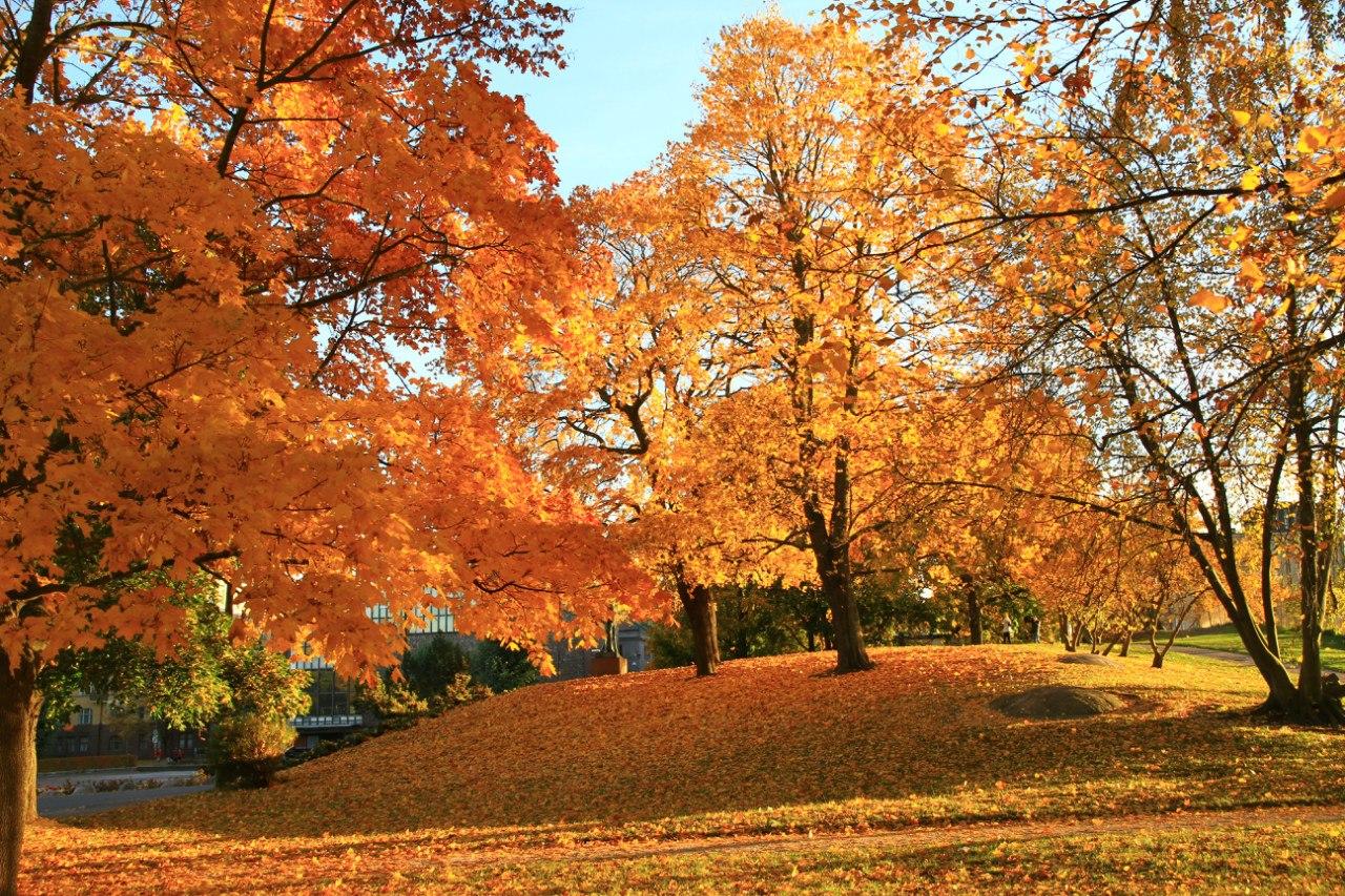 осень в финляндии