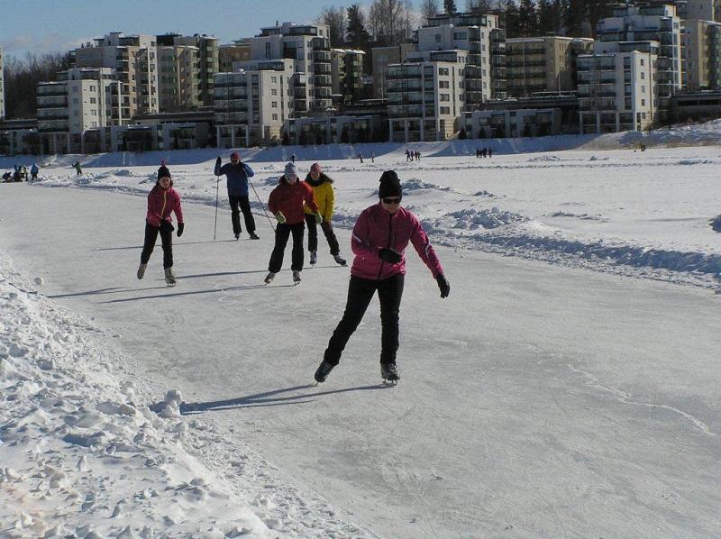 Прогулки на коньках