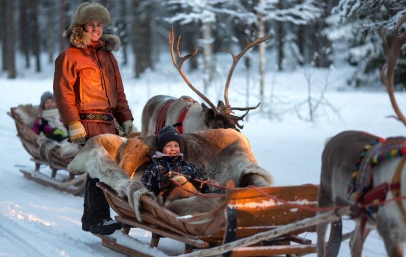 Поездка на оленью ферму в Финляндии