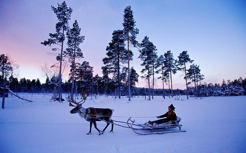 В каком году образовалась Финляндия история