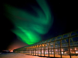 Научный центр Арктикум