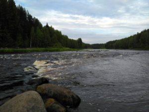 Можно отправиться на экскурсию по реке